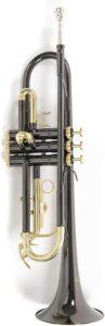 Mejores trompetas para jóvenes
